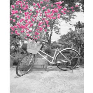 Bike By Pink Tree Custom Made Picture Frame