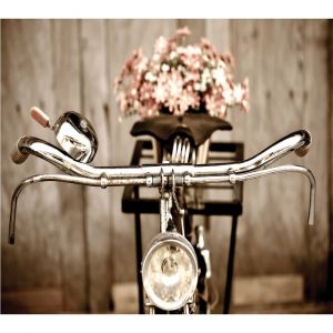 Bicycle Handles Custom Made Picture Frame