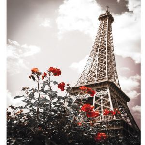 Paris Red Flower Custom Made Picture Frame