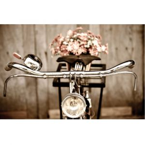 Vintage Bicycle Custom Made Picture Frame