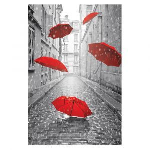 Red Brollies Custom Made Picture Frame