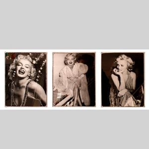 Mirrored Marilyn Monroe 85 X 45 3 Picture Custom Made Frame