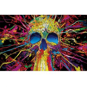 Psychedelic Skull Custom Made Picture Frame