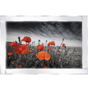 Red Flowers Mirrored Picture Frame