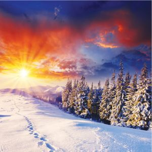 Sunset Over Snowy Forest Custom Made Picture Frame