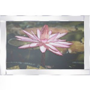Waterlily Mirrored Picture Frame